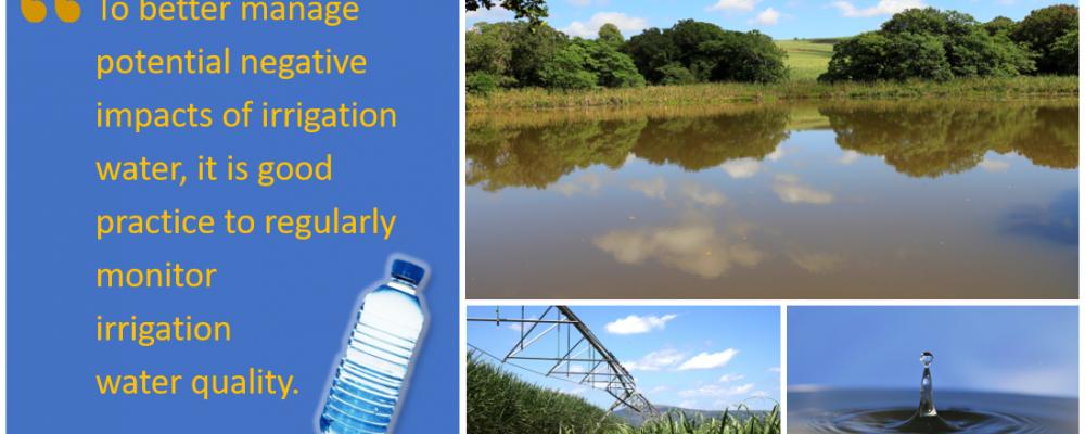 irrig_water_test